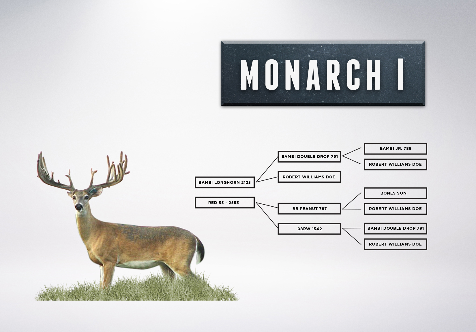 Chart_MonarchI