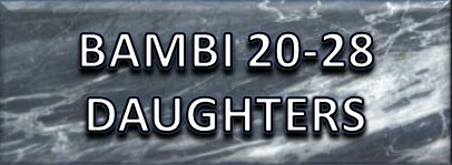 Bambi _20/28_Daughters_Button